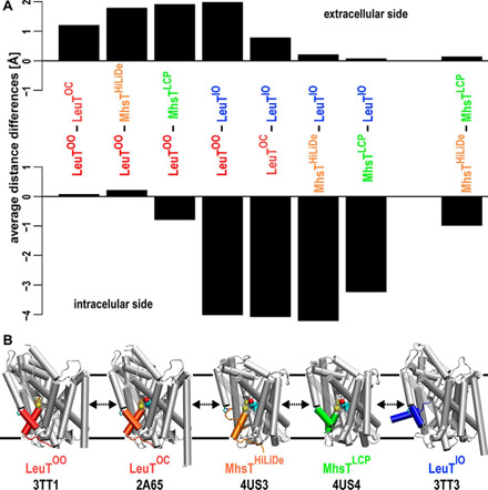 The role of transmembrane segment 5 (TM5) in Na2 release and the conformational transition of neurotransmitter:sodium symporters toward the inward-open state